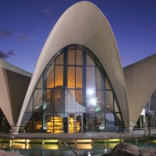 A combined reinforcement was used for a thin shell structure in the oceanographic park Valencia (Spain).